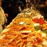 Meeresschutz für zu Hause mit dem WWF-Einkaufsratgeber Fische & Meeresfrüchte 2010 / 2011